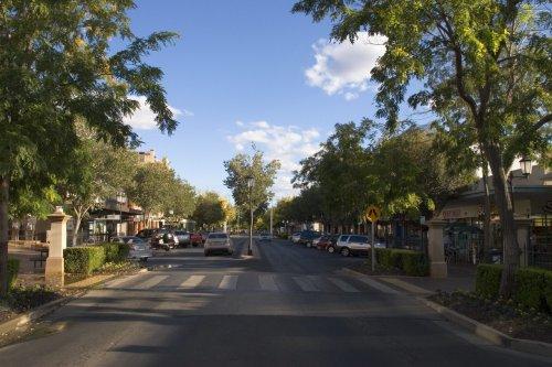 Leafy Macquarie Street.