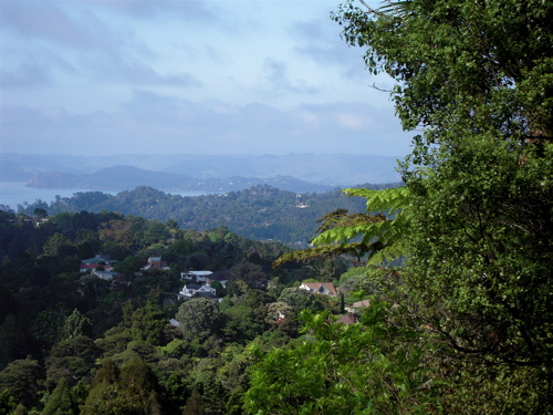 View from Titirangi's Mt Atkinson