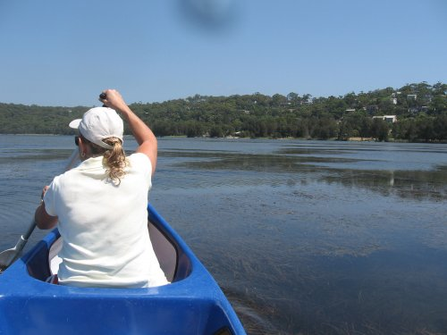 canoeing on Narrabeen lake home on top right